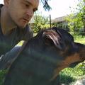 Teo, 37, Novi Sad, Сербия