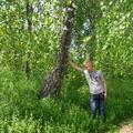 Алексей, 38, Maksatikha, Russia