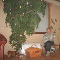 toff, 54, Cēsis, Letonija