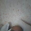 Sreten, 70, Vrbas, Srbija